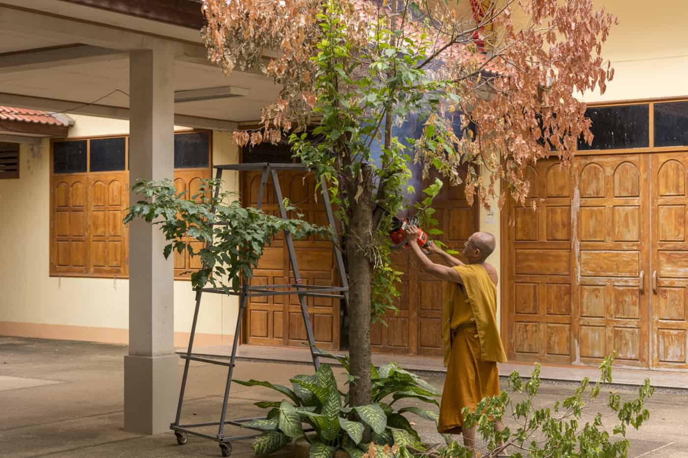 Mönch bei der Gartenarbeit im Wat Phet Wararam - Phetchabun
