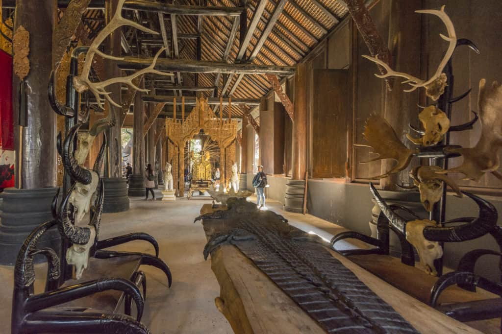 Eine große Krokodilhaut und Bänken aus Tierschädeln und Hörnern - Künstler Thawan Duchanee - Schwarze Haus in Chiang Rai