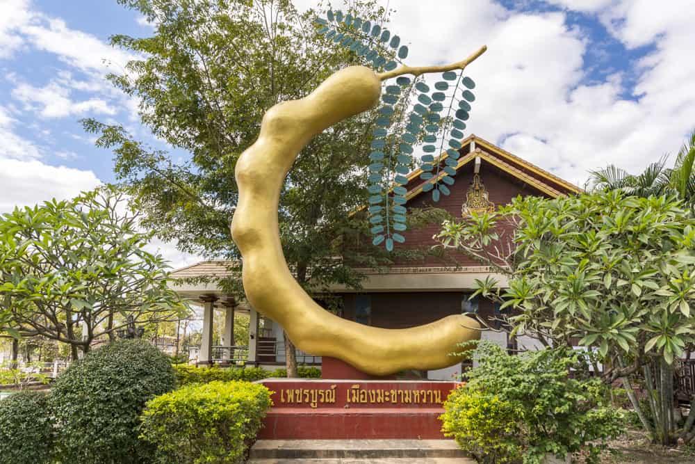 Skulptur einer Übergroßen Tamarinde
