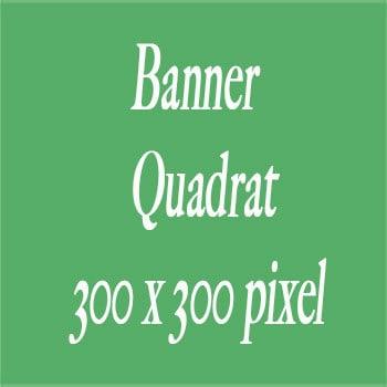 Banner Quadrat 300 X 300 pixel