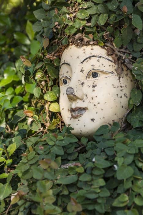 Von Pflanzen komplett umranktes Holzgesicht