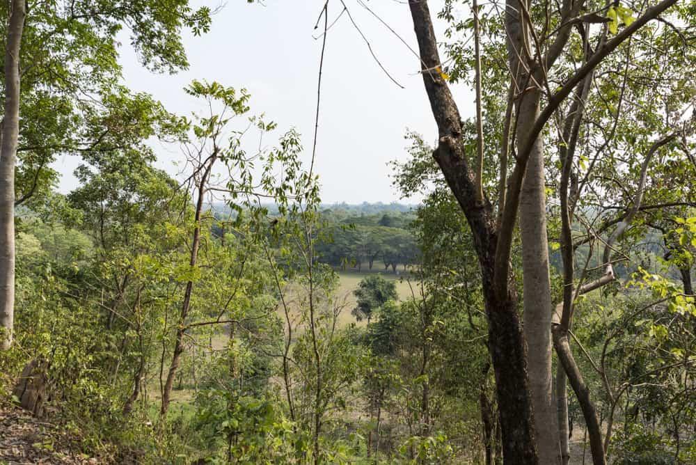 Aussicht vom Tempel aus über die Ebene von Si Satchanalai