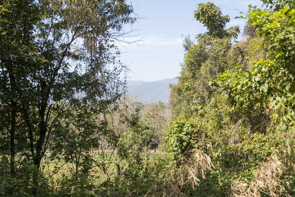 Landschaft im Nordthailand und Wohnort der Bergvölker