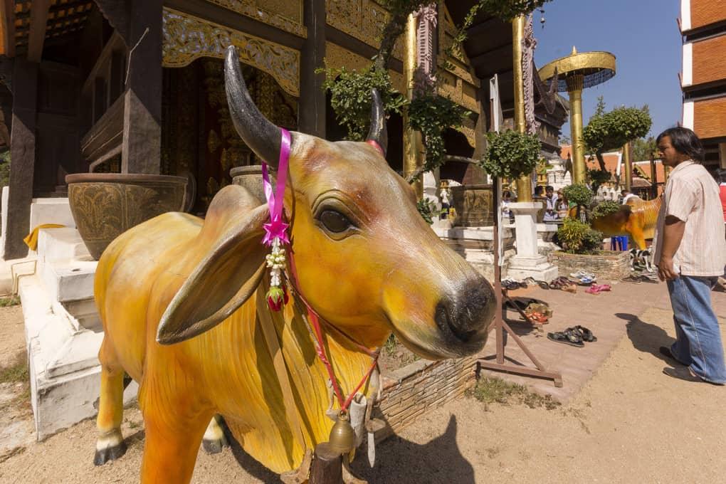Standbild eines Ochsen im Wat Phrathat Lampang Luang