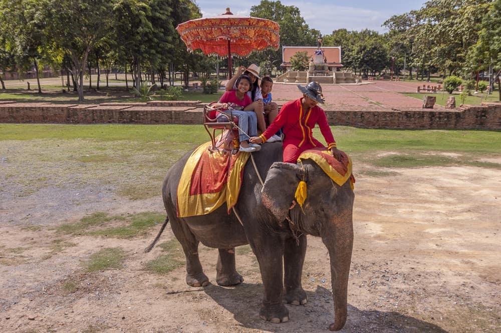 Elefantenreiten ist ein Teil von Thailand