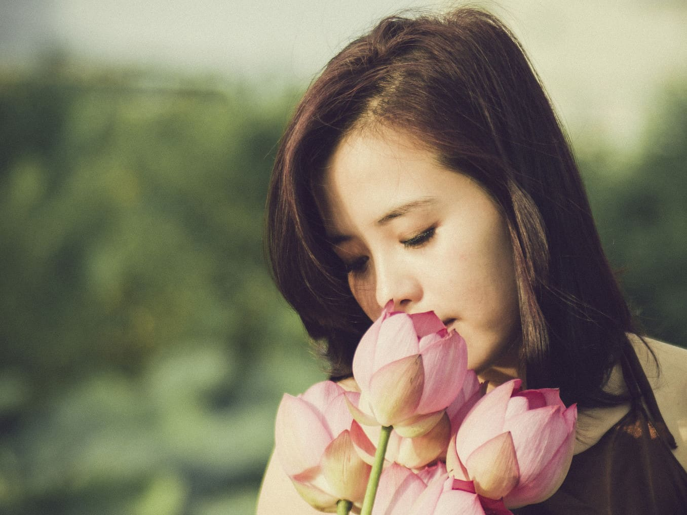 Der Lotus – Blume Buddhas