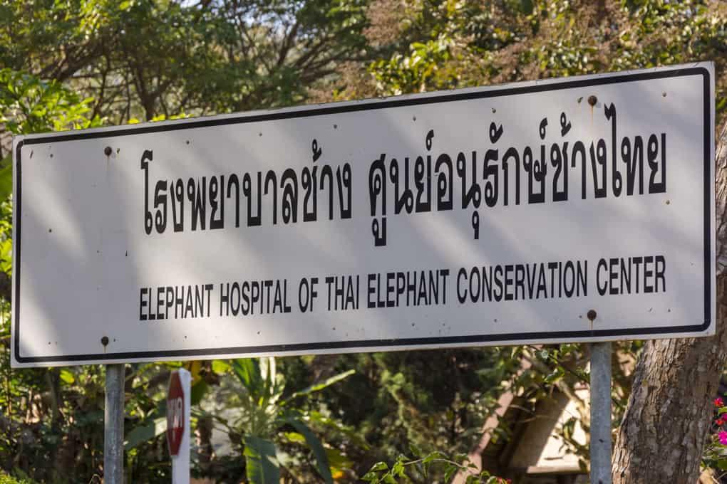 Hinweisschild zum einzigen Krankenhaus nur für Elefanten