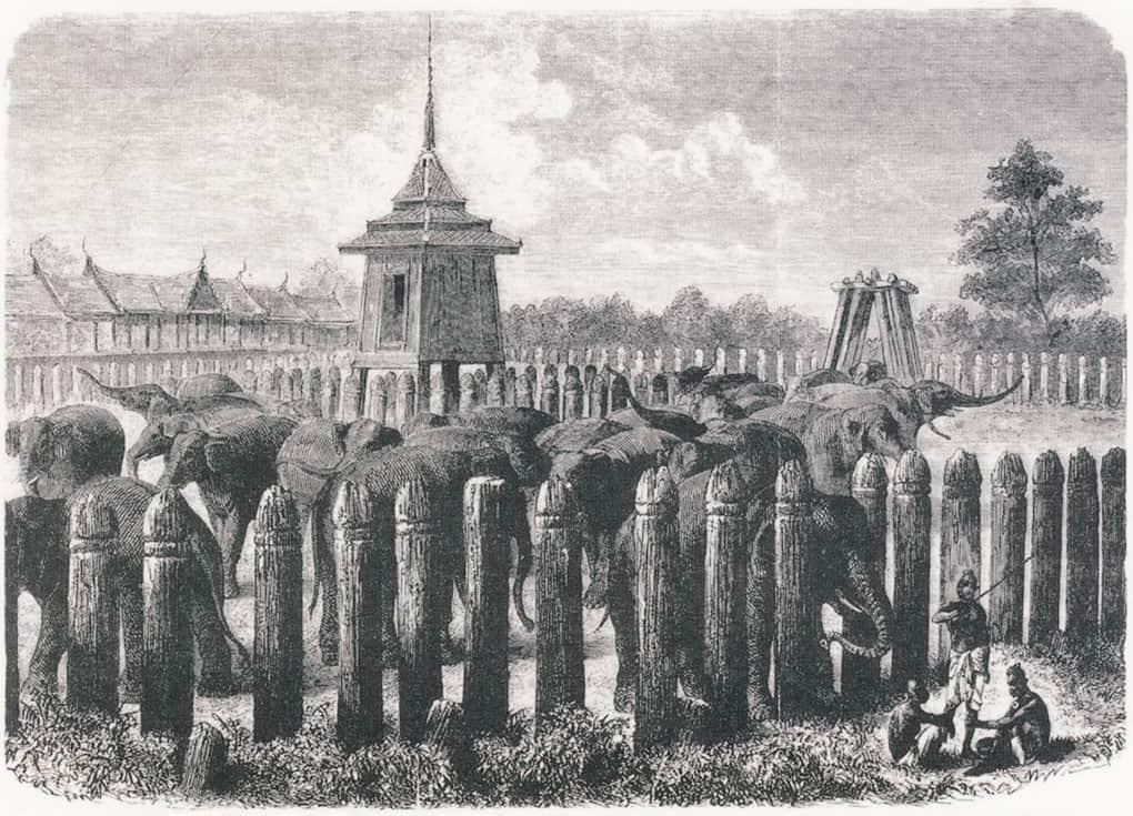 Historische Abbildung eines Elefanten-Kraals in Thailand