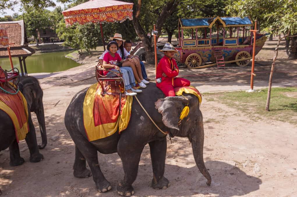 Elefantenreiten in Ayutthaya